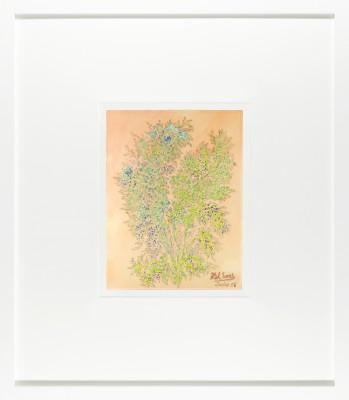 Abstrakcja roślinna